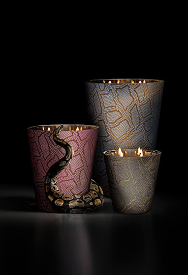 (c) Baobab Collection - Jungle Python